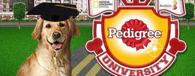 Pedigree-University